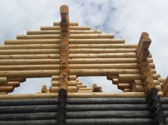 Достройка бревенчатого рубленого дома фото 11